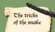 tricks of the Slytherin snake